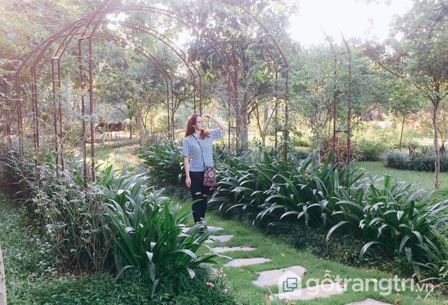 Homestay Mely Farm - ảnh internet