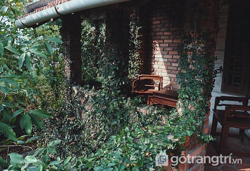 Homestay gần Hà Nội Jungle House - ảnh internet