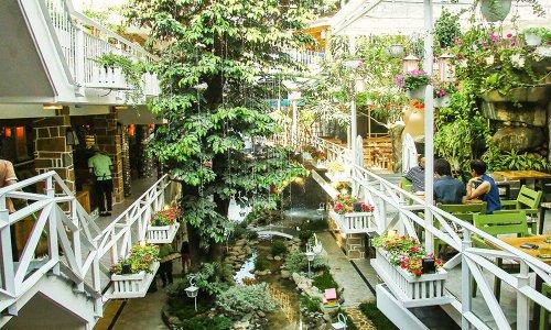 Đổ gục trước 5 quán cà phê đẹp ở Gò Vấp cực xinh, cực lung linh