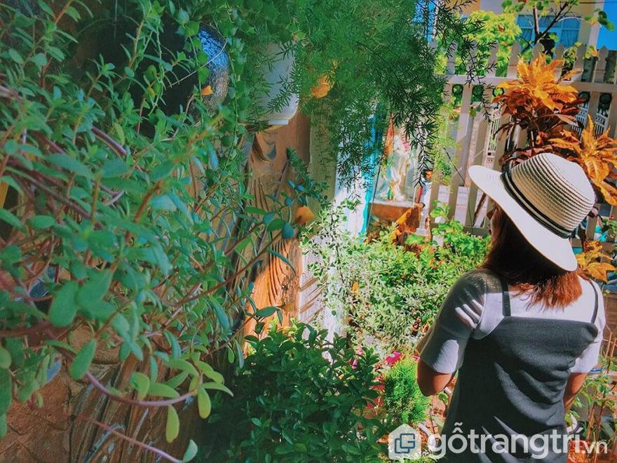 Các homestay ở Đà Nẵng