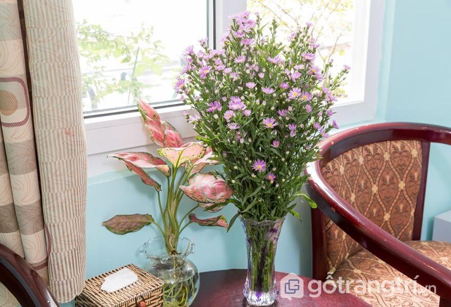 Không gian ngọt ngào với hoa tươi trong phòng - ảnh internet