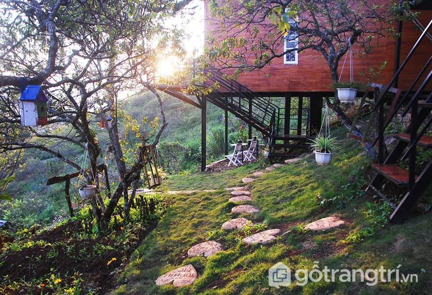 Homestay đẹp ở Mộc Châu Tophill (ảnh internet)