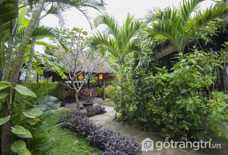 An Bàng Garden Homestay (ảnh internet)