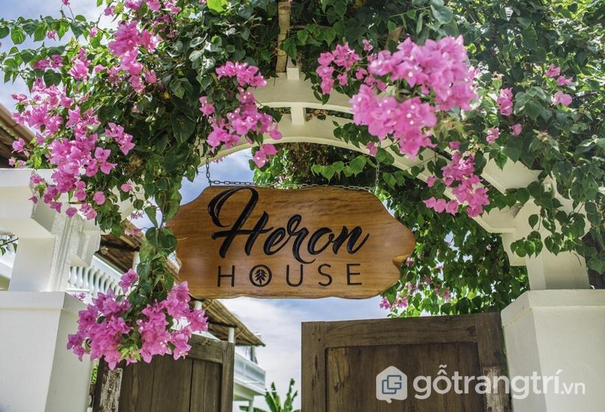 Heron House - Homestay Hội An view đẹp như mộng (ảnh internet)