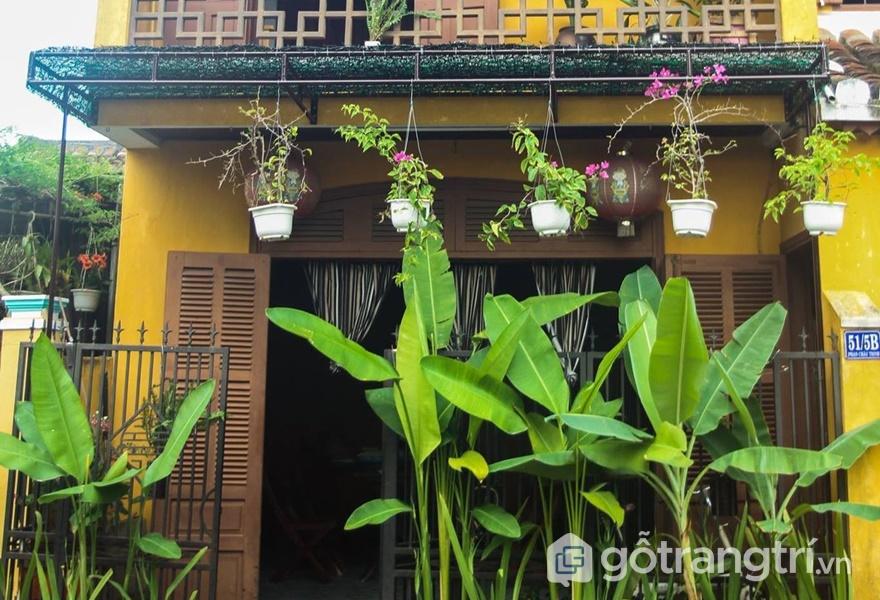 Homestay Hội An view đẹp Old Yellow House (ảnh internet)