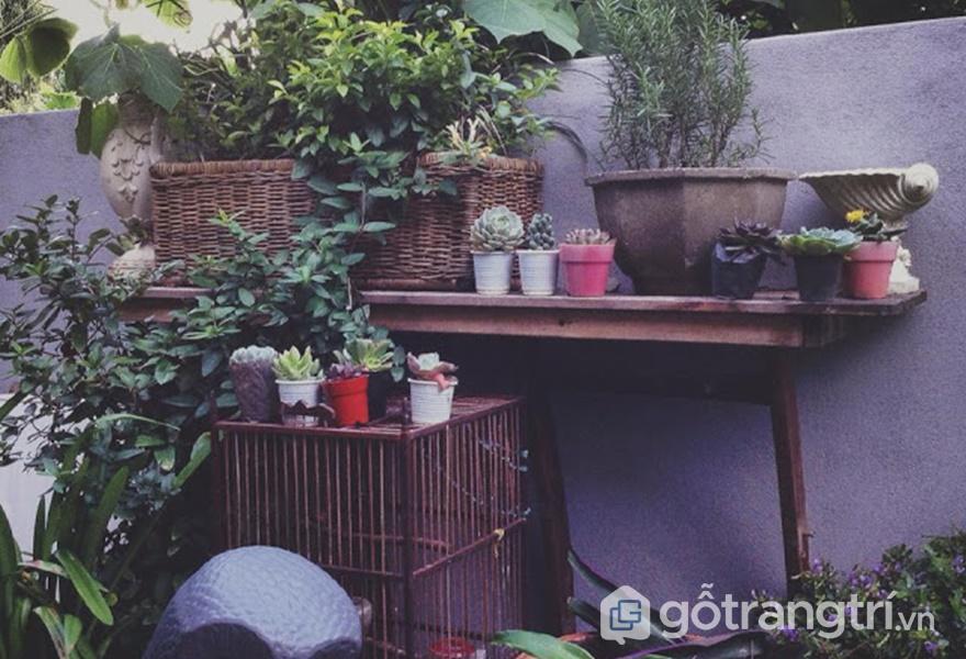 Nét đẹp bình dị tại homestay (ảnh internet)
