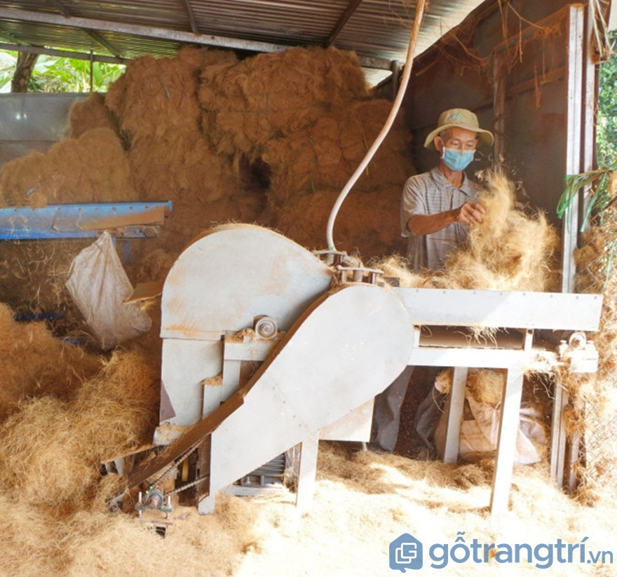 Bóc tách sợi xơ dừa từ máy - Ảnh: Internet