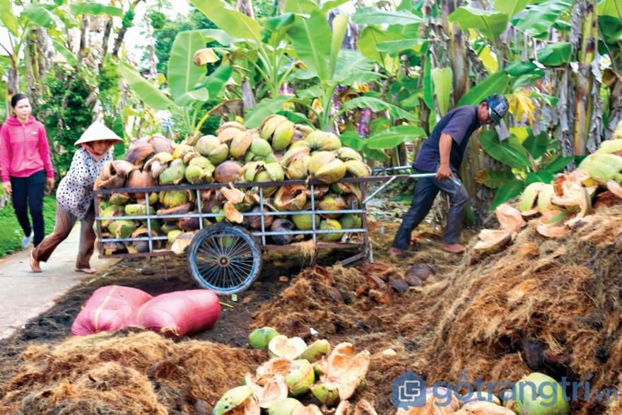 Trải nghiệm về làng nghề chỉ xơ dừa Bến Tre bên dòng sông Thom - Ảnh: Internet