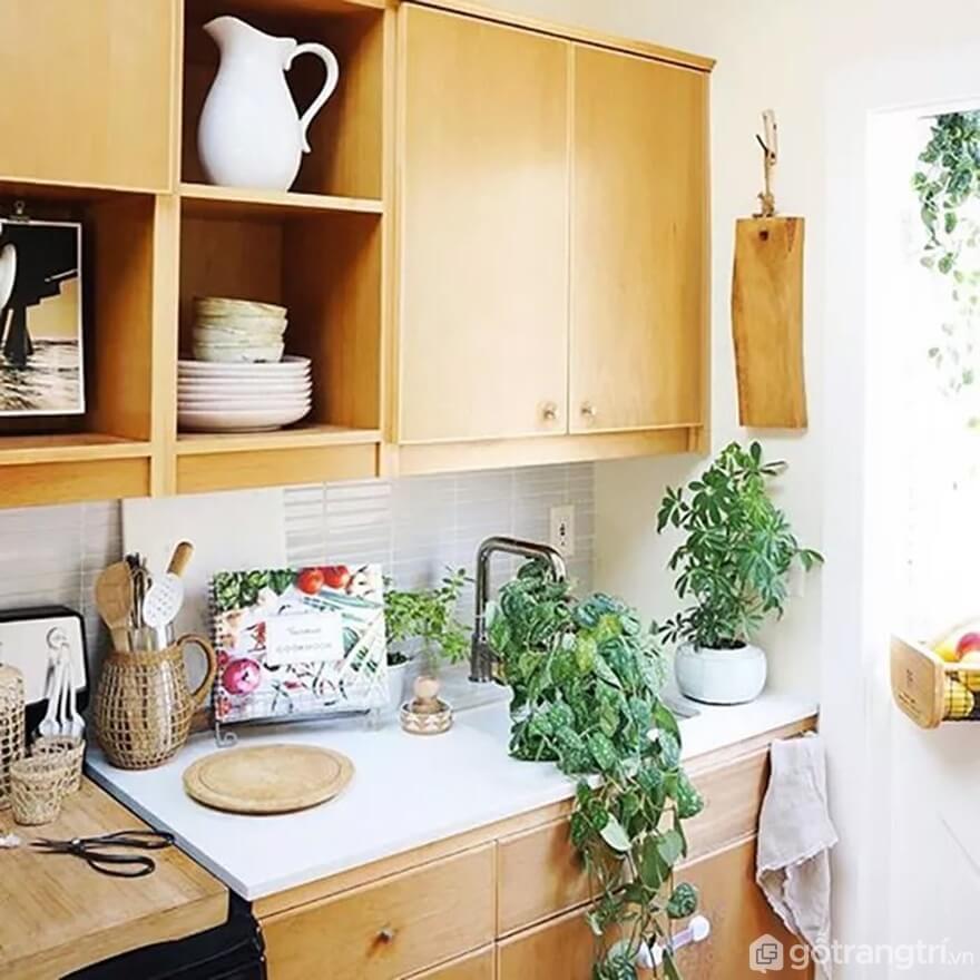 Mẫu 10: Nhà bếp nhỏ sử dụng cây xanh - Ảnh: Internet
