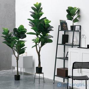 Cay-bang-Sing-trang-tri-gia-dinh-loai-90-cm-GHS-6583-2 (7)