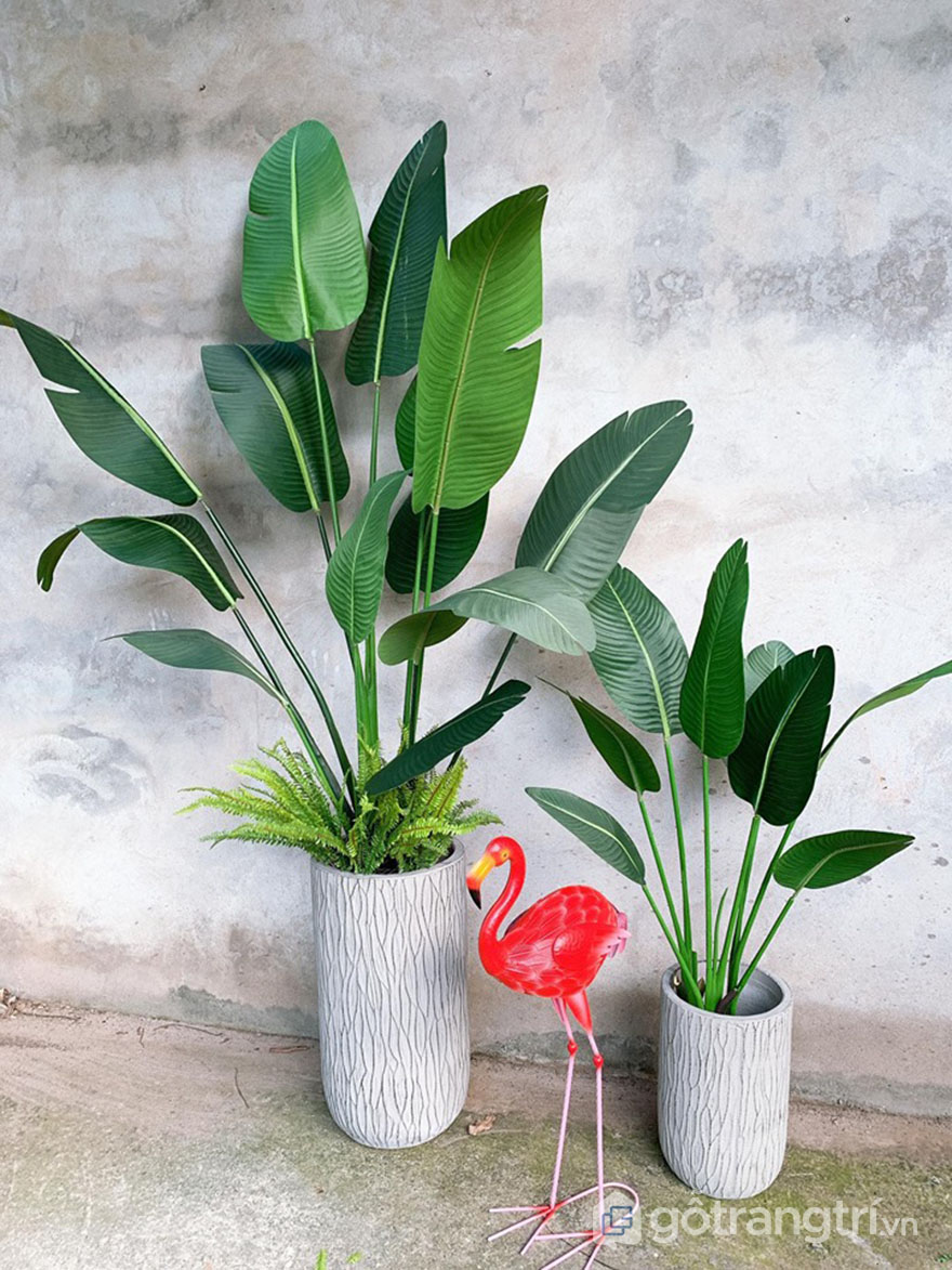 Cay-chuoi-canh-gia-trang-tri-dep-loai-210-cm-GHS-6584-4
