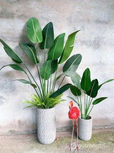 Cay-chuoi-canh-gia-trang-tri-phong-khach-loai-180-cm-GHS-6584-3 (22)