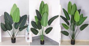 Cay-chuoi-canh-gia-trang-tri-phong-khach-loai-180-cm-GHS-6584-3 (4)