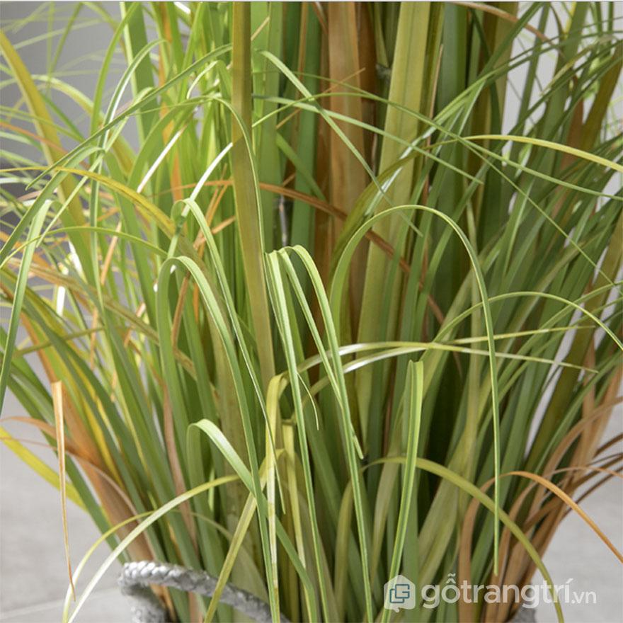 Cay-co-bong-lau-trang-tri-dep-loai-88-cm-GHS-6598-1