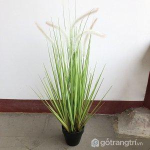 Cay-co-duoi-tho-gia-trang-tri-gia-dinh-loai-90-cm-GHS-6597-1 (12)