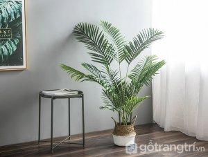 Cay-dua-canh-trang-tri-khong-gian-song-loai-140-cm-GHS-6590-2 (1)