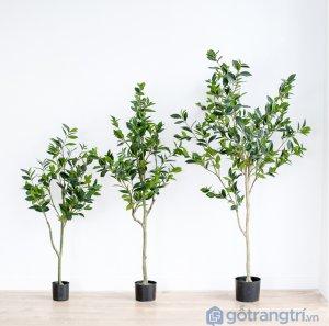 Cay-olive-gia-trang-tri-loai-120-cm-GHS-6586-1 (12)