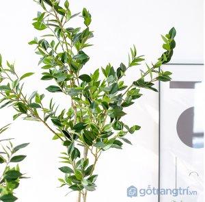 Cay-olive-gia-trang-tri-loai-120-cm-GHS-6586-1 (13)