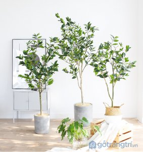 Cay-olive-gia-trang-tri-loai-120-cm-GHS-6586-1 (17)
