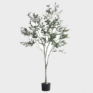 Cay-olive-gia-trang-tri-trong-nha-loai-150cm-GHS-6586-2