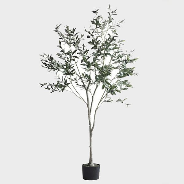 Cay-olive-gia-trang-tri-trong-nha-loai-150cm-GHS-6586-2