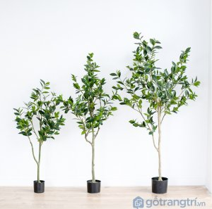 Cay-olive-gia-trang-tri-trong-nha-loai-150cm-GHS-6586-2 (12)