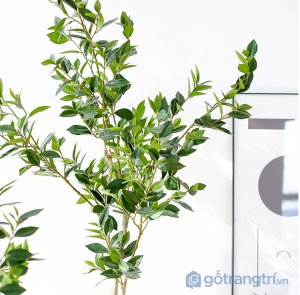 Cay-olive-gia-trang-tri-trong-nha-loai-150cm-GHS-6586-2 (13)