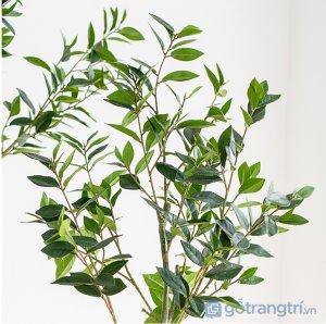 Cay-olive-gia-trang-tri-trong-nha-loai-150cm-GHS-6586-2 (16)