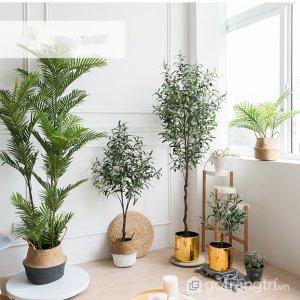 Cay-olive-gia-trang-tri-trong-nha-loai-150cm-GHS-6586-2 (18)