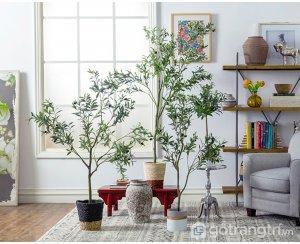 Cay-olive-gia-trang-tri-trong-nha-loai-150cm-GHS-6586-2 (9)
