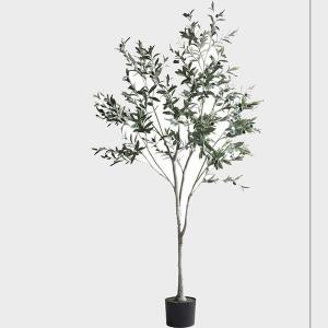 Cay-olive-gia-trang-tri-trong-nha-loai-150cm-GHS-6586-2-ava