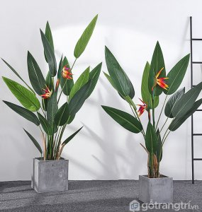 Cay-thien-dieu-canh-chat-luong-loai-140-cm-GHS-6588-1 (13)