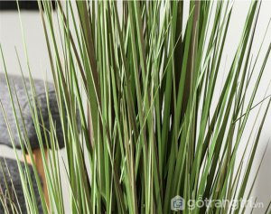 Co-duoi-tho-trang-tri-khong-gian-song-loai-90-cm-GHS-6599-3 (17)