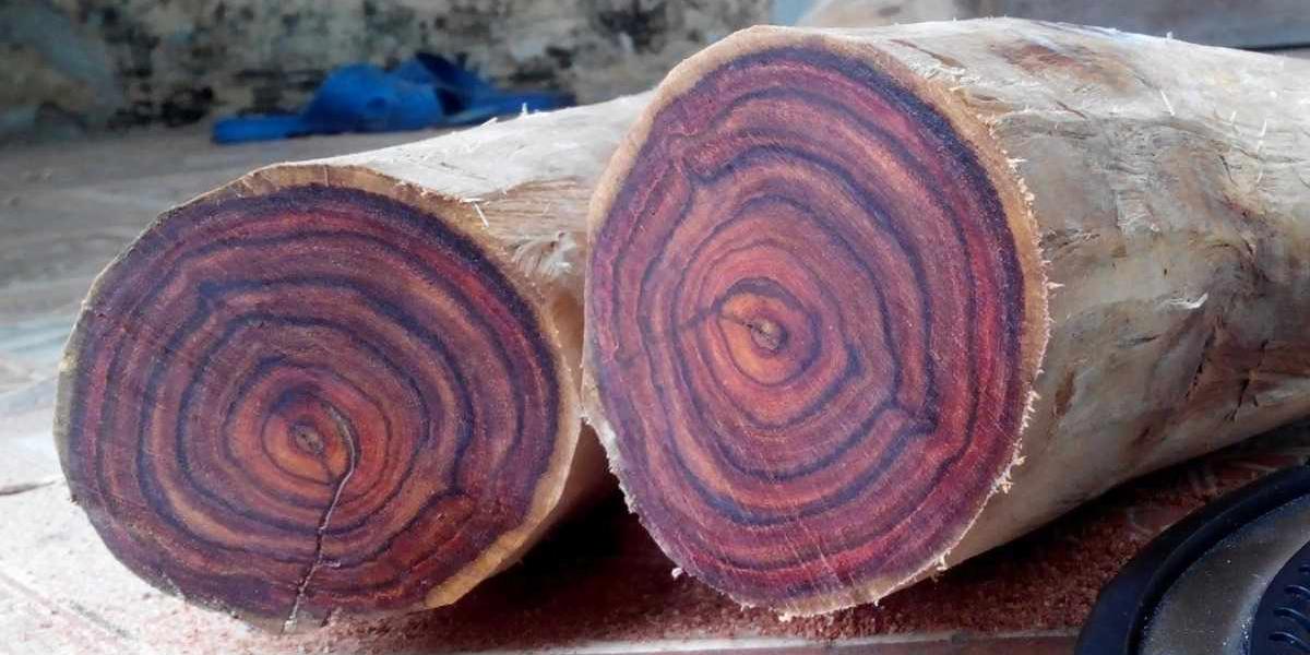 các loại gỗ quý
